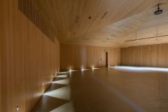 Boiserie-plafond_salle_auditorium_002