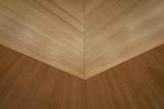 Plafond-acoustique_salle_auditorium_017